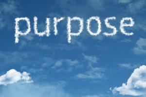 Apostle Paul's purpose in the Bible